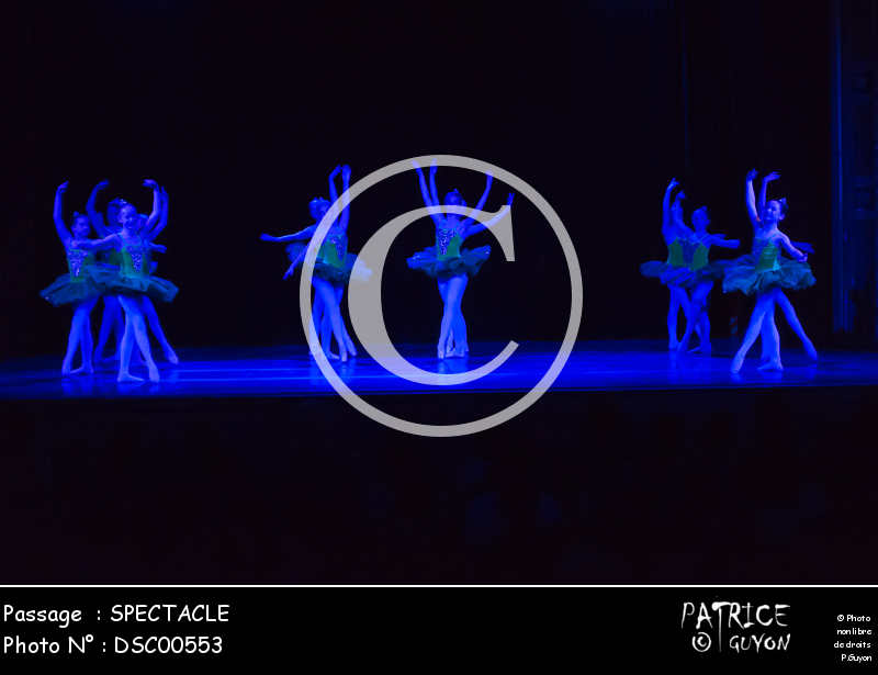 SPECTACLE-DSC00553