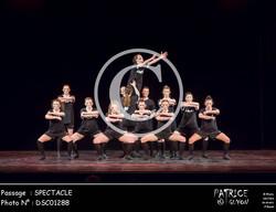 SPECTACLE-DSC01288
