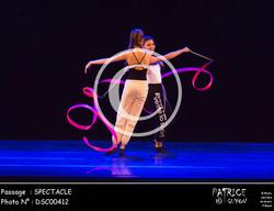 SPECTACLE-DSC00412
