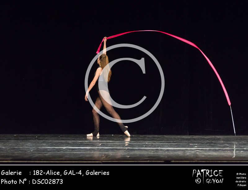 182-Alice, GAL-4-DSC02873