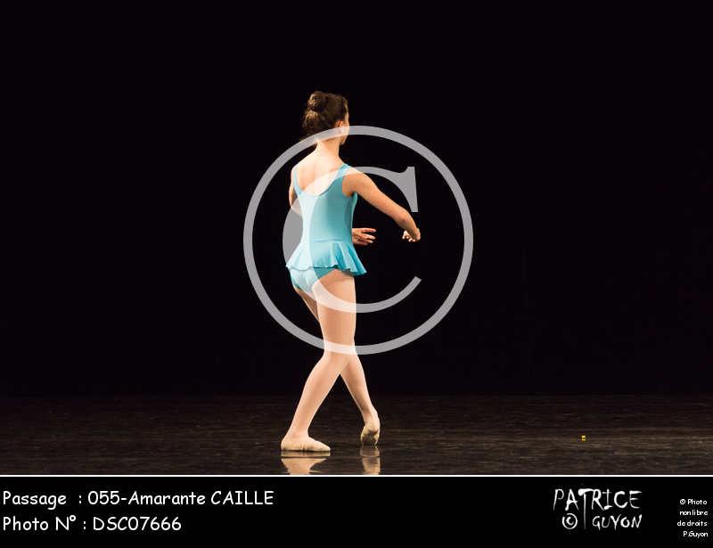 055-Amarante CAILLE-DSC07666