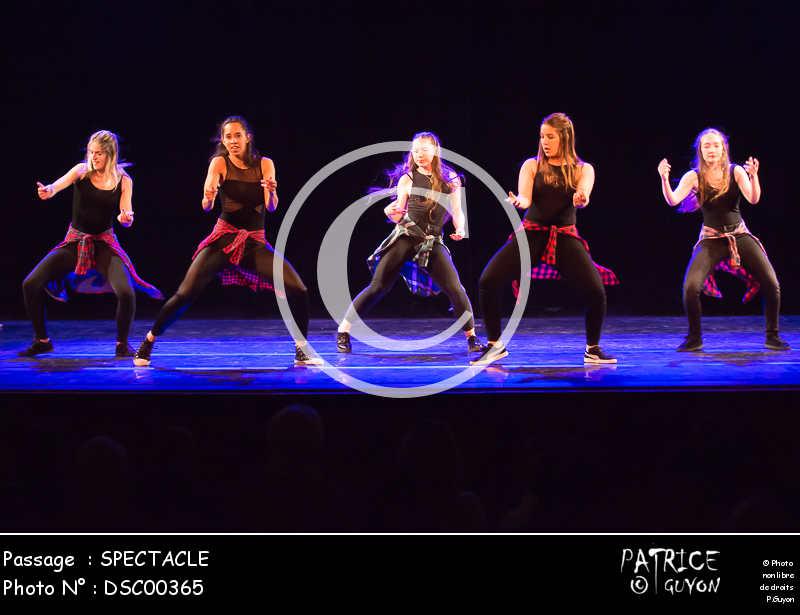 SPECTACLE-DSC00365
