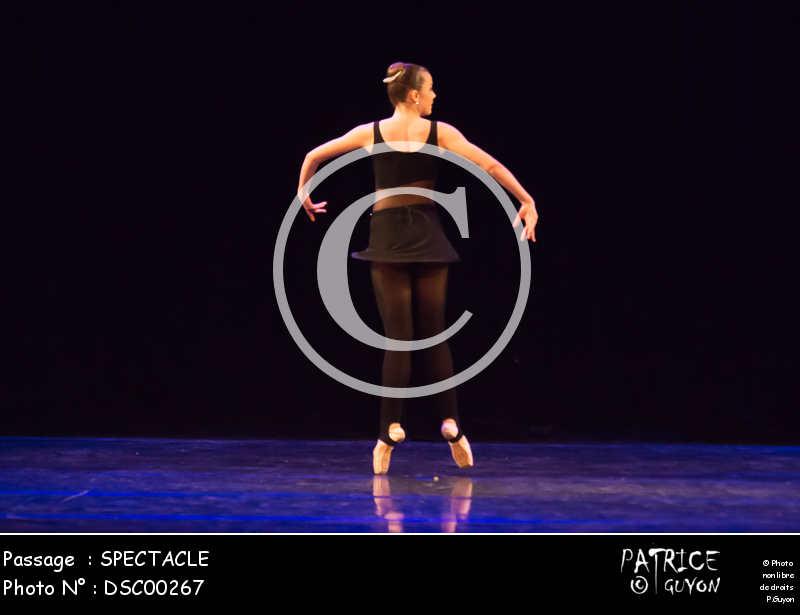 SPECTACLE-DSC00267