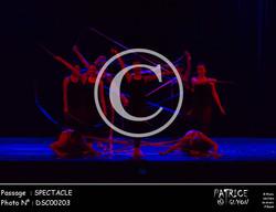 SPECTACLE-DSC00203