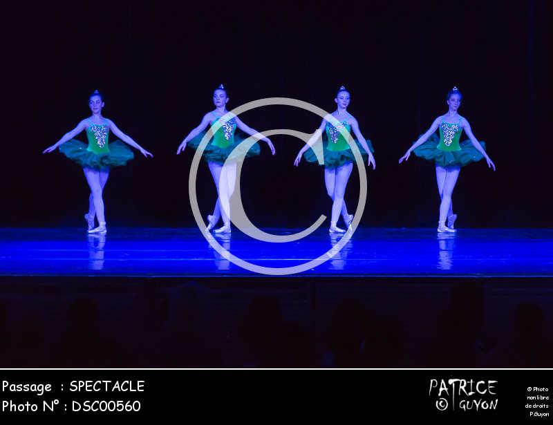 SPECTACLE-DSC00560