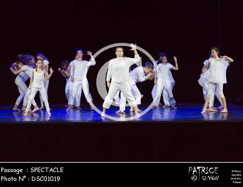 SPECTACLE-DSC01019