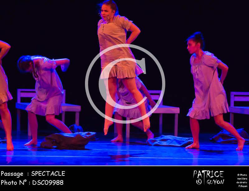 SPECTACLE-DSC09988