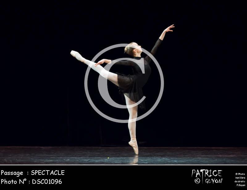SPECTACLE-DSC01096
