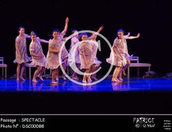 SPECTACLE-DSC00088