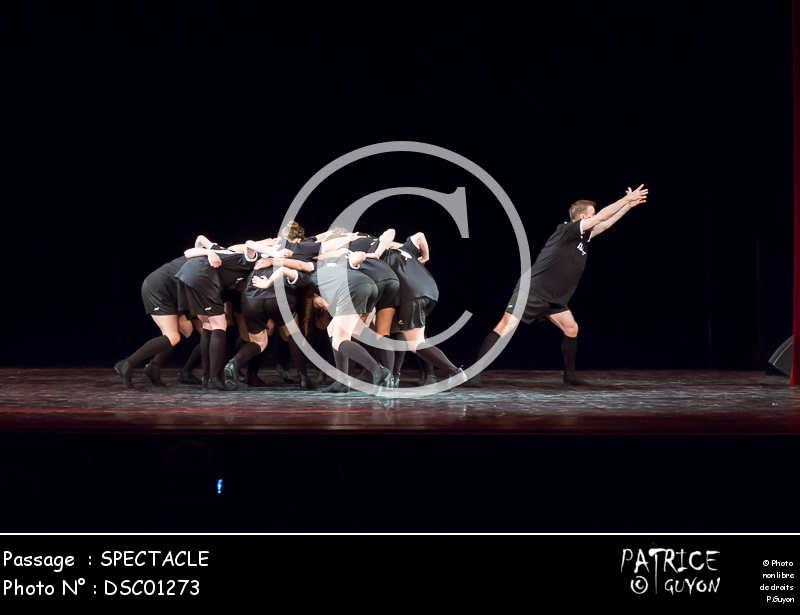 SPECTACLE-DSC01273