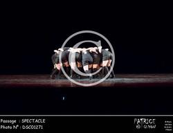 SPECTACLE-DSC01271
