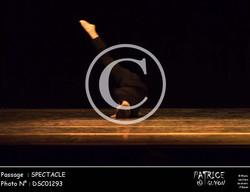 SPECTACLE-DSC01293