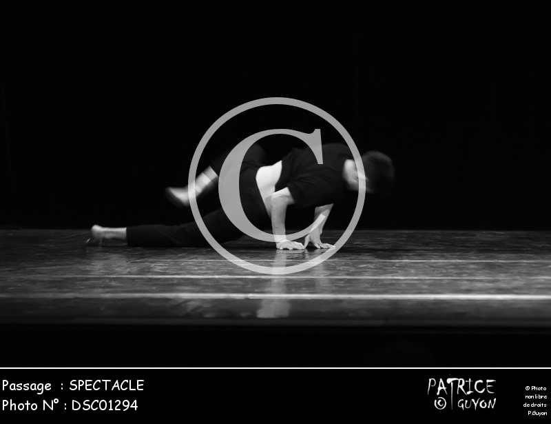 SPECTACLE-DSC01294