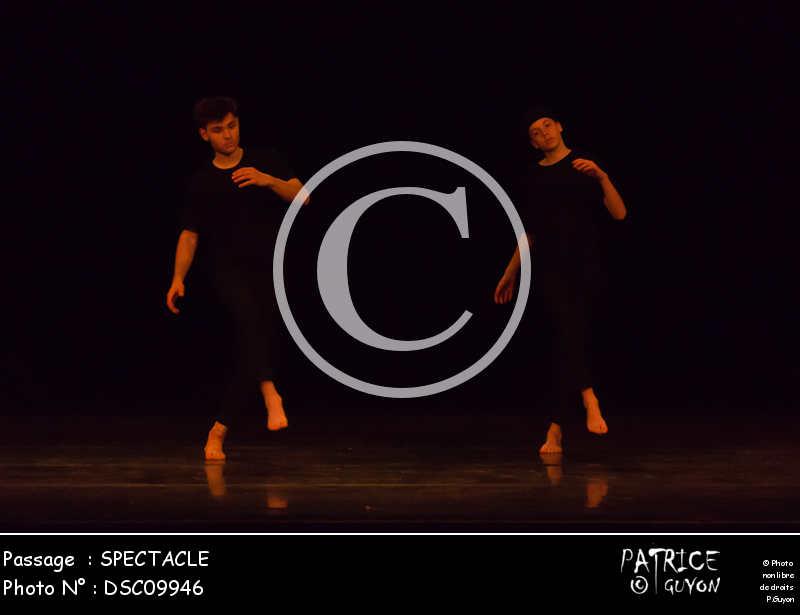 SPECTACLE-DSC09946