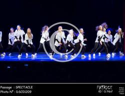 SPECTACLE-DSC01209