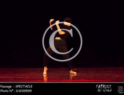 SPECTACLE-DSC00599