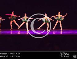 SPECTACLE-DSC00520
