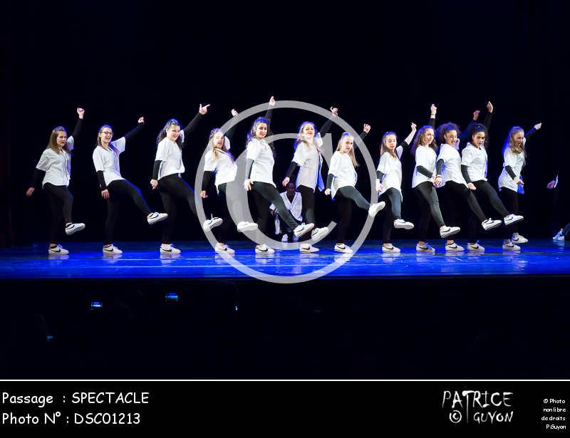 SPECTACLE-DSC01213