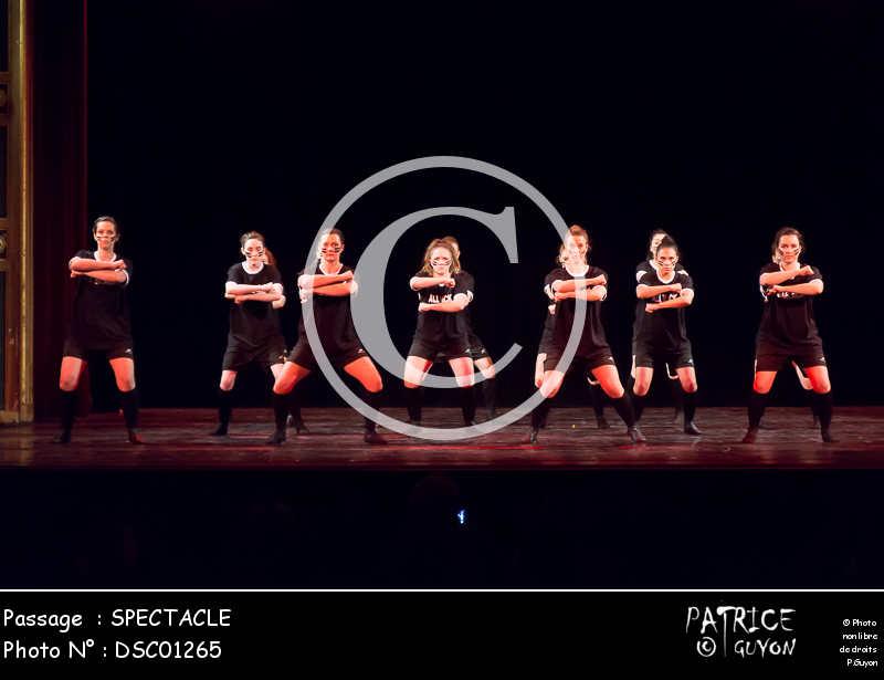 SPECTACLE-DSC01265