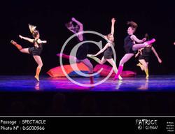 SPECTACLE-DSC00966