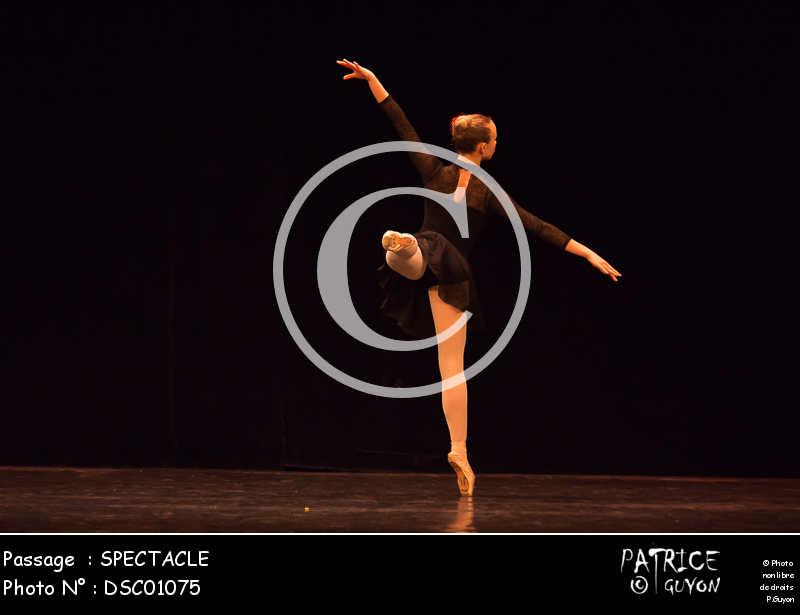SPECTACLE-DSC01075
