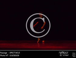 SPECTACLE-DSC00109