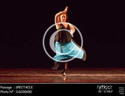 SPECTACLE-DSC00650
