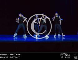 SPECTACLE-DSC00617
