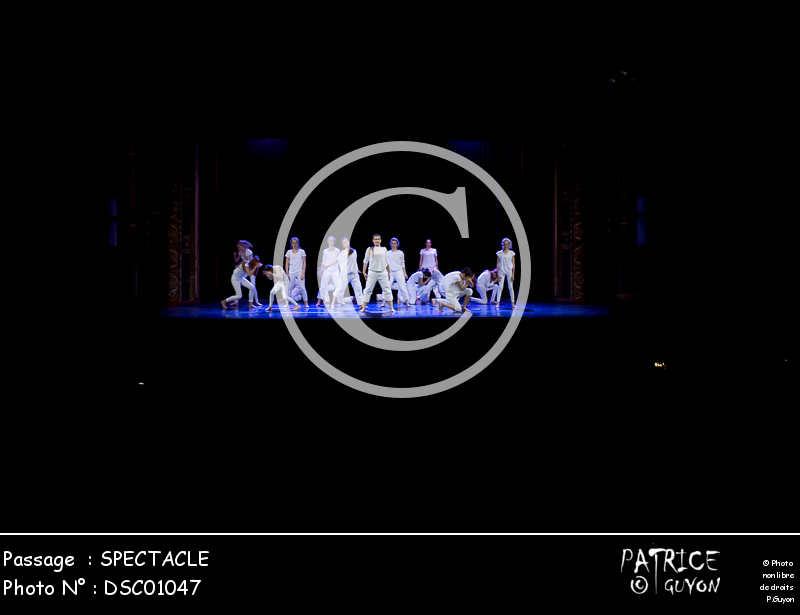 SPECTACLE-DSC01047