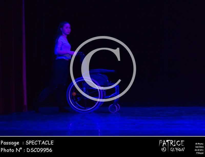 SPECTACLE-DSC09956