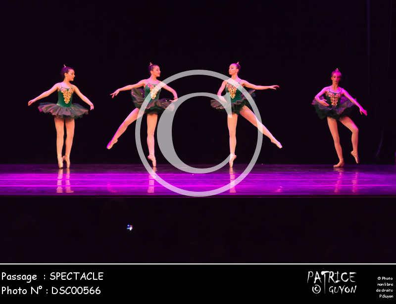 SPECTACLE-DSC00566