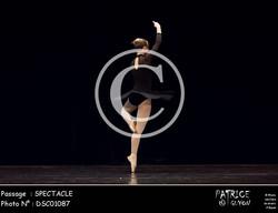 SPECTACLE-DSC01087