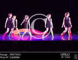 SPECTACLE-DSC00981