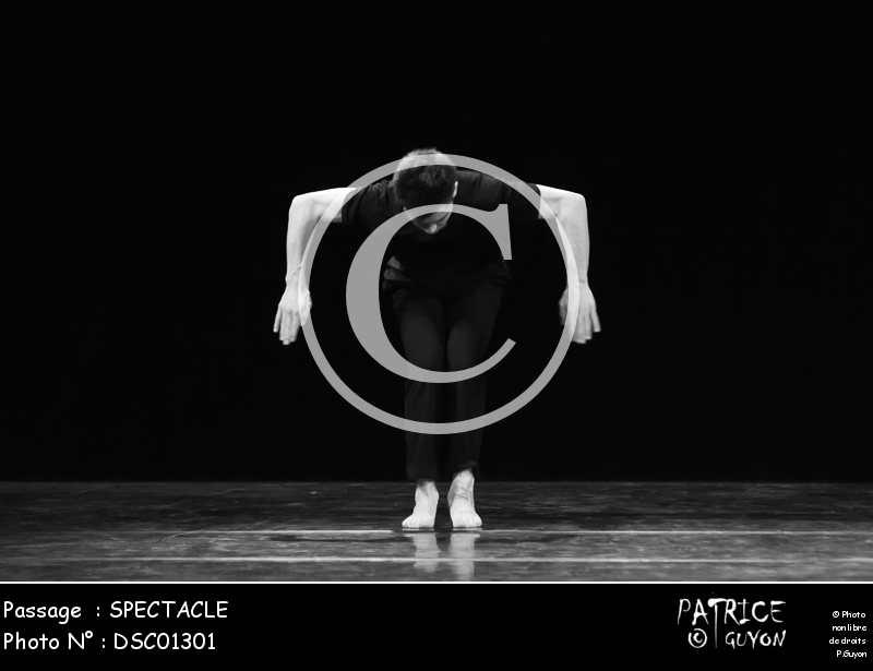 SPECTACLE-DSC01301