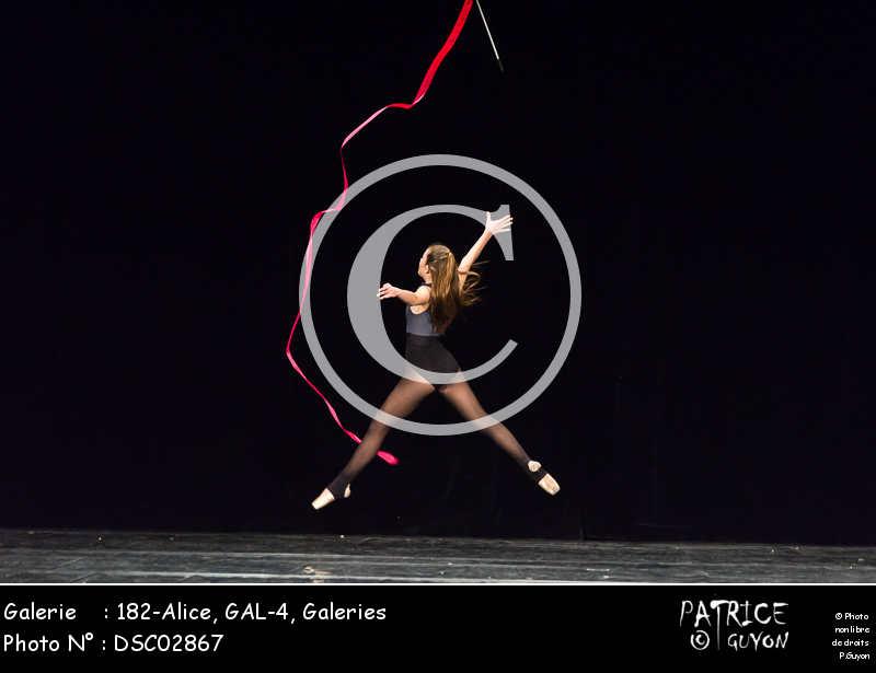 182-Alice, GAL-4-DSC02867