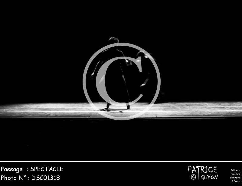 SPECTACLE-DSC01318