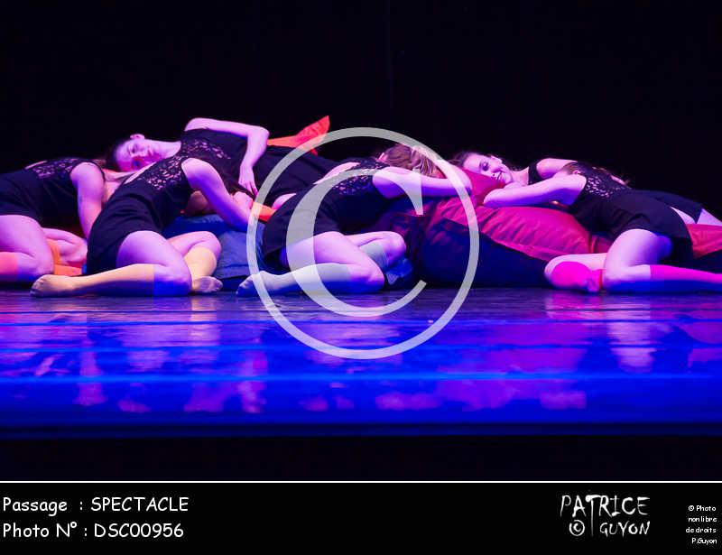SPECTACLE-DSC00956