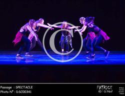 SPECTACLE-DSC00341
