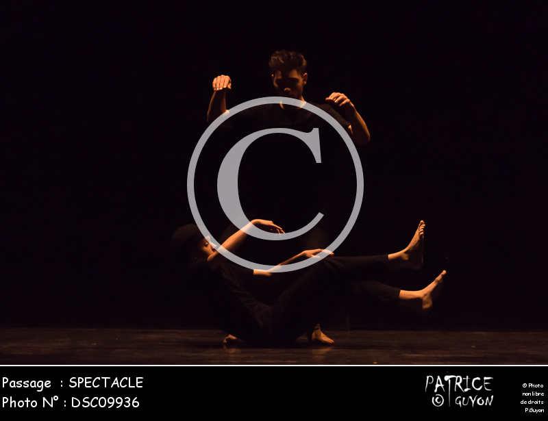 SPECTACLE-DSC09936