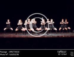 SPECTACLE-DSC01278