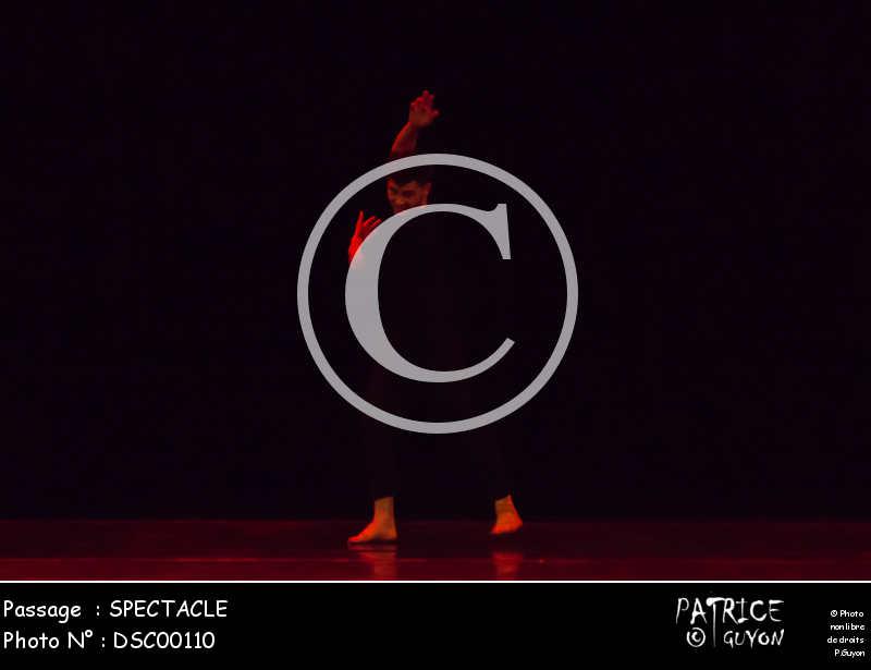 SPECTACLE-DSC00110