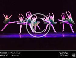 SPECTACLE-DSC00531