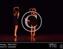 SPECTACLE-DSC01054
