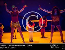 _Partie 1, 18--Petites Intentions--DSC07456