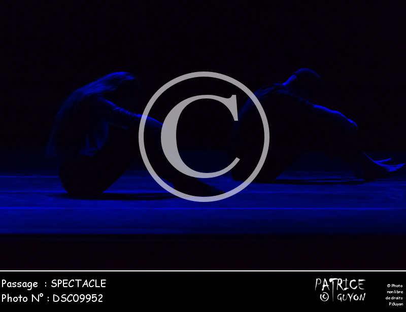 SPECTACLE-DSC09952