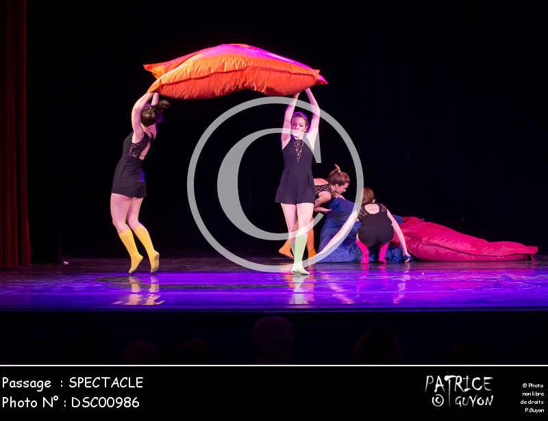 SPECTACLE-DSC00986