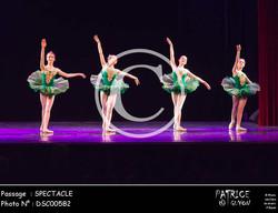 SPECTACLE-DSC00582
