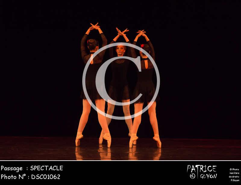 SPECTACLE-DSC01062