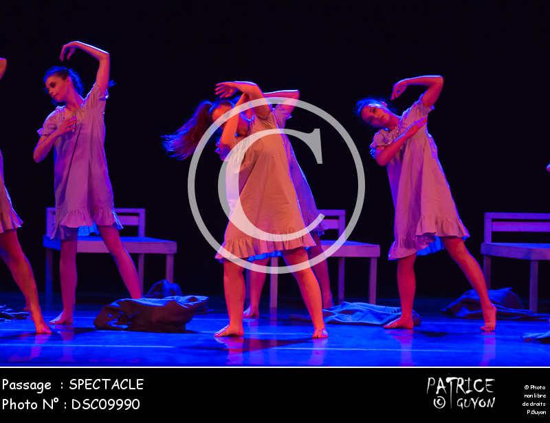 SPECTACLE-DSC09990