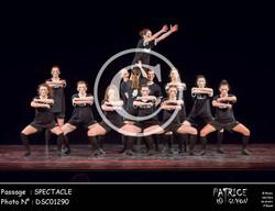 SPECTACLE-DSC01290